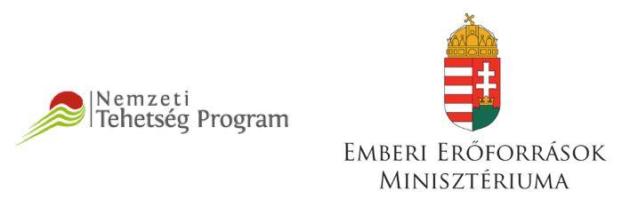 nemzei-tehetseg-es-emmi-logo
